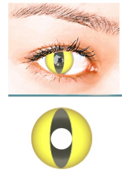 Yellow Cat Crazy Contact Lens (pair)